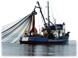 A vessel with a trawling net, courtesy of EDF.